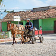 Farmer with  hat driving rustic carriage with one horse in Trini - Stock Photo