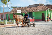 Farmer with hat driving rustic carriage with one horse in Trini — Stock Photo