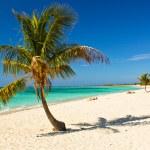 Caribbean Island Paradise , Cuba — Stock Photo #21293407