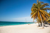 Caribbean Island Paradise - beach with stunning turquoise water — Stock Photo