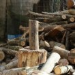 Stock Video: Young mis chopping wood