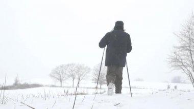 Kışın Kuzey yürüyüşü — Stok video