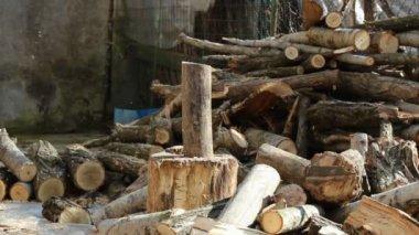 Lumberjack — Stock Video