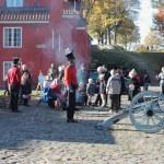 Danish Historical Military parade — Stock Photo #14136324