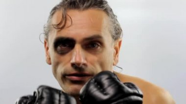 Śmieszne bokser — Wideo stockowe