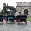 Carriages in Rome — Stock Photo #17381059
