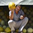 Stock Photo: Melon seller