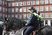 Mounted police in Plaza Mayor — Stock Photo