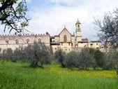 Certosa in toscana, italia — Foto Stock