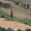 Romagna Italian rural landscape — Stock Photo