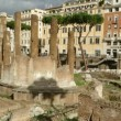 Largo Argentina in Rome — Stock Video