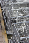 Empty shopping trolleys in a market — Stock Photo