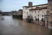 テヴェレ川を洪水します。 — ストック写真