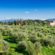 Landscape of Tuscany, Florence — Stock Photo
