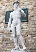 Michelangelo s replica David statue Florence — Stockfoto