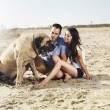 Couple on the beach playing with pet dog. — Stock Photo