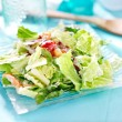 Garden salad — Stock Photo