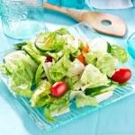 Garden salad — Stock Photo #33605339
