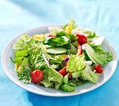 Garden salad — Stock Photo