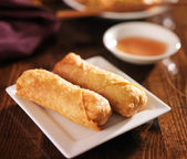 Two chinese egg rolls on plate — Stock Photo