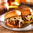 Pulled pork sandwiches with bbq sauce and slaw — Stock Photo #46870947