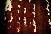 Rust texture of metal wall — Stock Photo