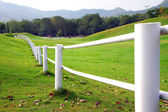 Bílý plot — Stock fotografie
