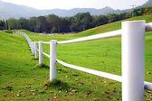 白いフェンス — ストック写真