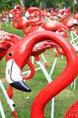 červený plameňáci — Stock fotografie