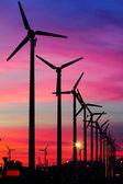 Wind turbine silhouettes at twilight. — Stock fotografie