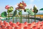 Lotus-skulptur in brunnen — Stockfoto