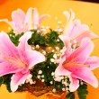 Lilly flowers — Foto Stock