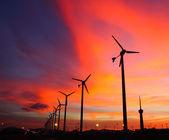 Wind turbine silhouettes — Stock Photo