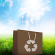 Brown recycle paper shopping bag ecology concept — Stock Photo