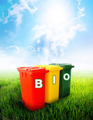 Bio wording on colorful recycle bins — Stock Photo
