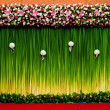 Stock Photo: Backdrop flowers for wedding ceremony