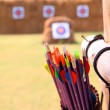 Arrows and target archery  — Stock Photo