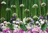 Arrangement de fleurs exotiques — Photo