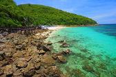 Koh larn praia ilha tropical na cidade de pattaya. — Foto Stock