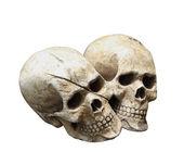 人类的头颅骨模型分离具有剪切路径. — 图库照片