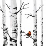 Bird of birches — Stock Vector