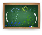 Tiza dibujando en un pizarra el ciclo del agua — Vector de stock