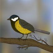 Bird on tree — Stock Vector