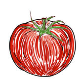 Watercolor tomato — Vector de stock