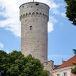 Pikk Hermann tower. Tallinn, Estonia — Stock Photo