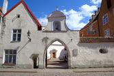 St. Peter and St. Paul's (Peeter-Pauli Katedraal) Cathedral. Tallinn, Estonia — Stock Photo