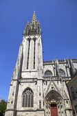 Cathedral of Quimper. France — Stock Photo