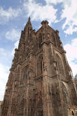 Cathedral of Our Lady. Strasbourg, France — Stock Photo