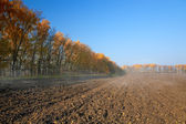 Autumn rural landscape with plowed field at morning mist — Stock Photo