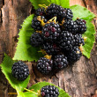 Stock Photo: Blackberry on bark background